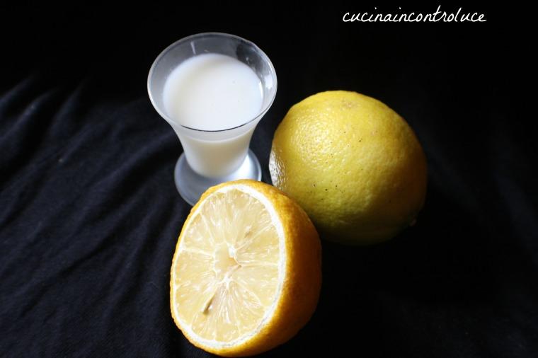 limoncello (5)